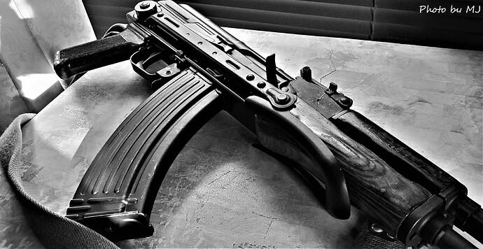 AKMS 1