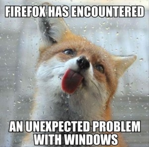 firefox has encounted and unexpected problem with windows